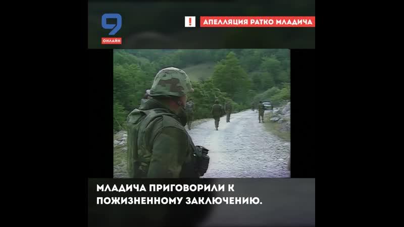 Апелляция Ратко Младича