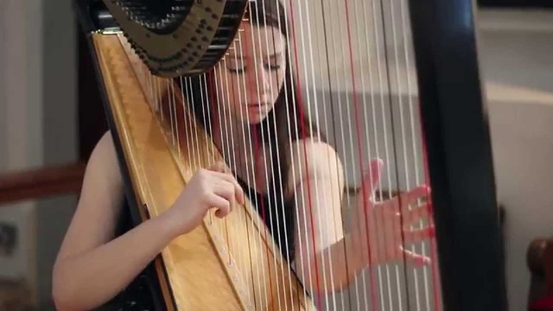 J S Bach Toccata and Fugue in D Minor BWV 565 Amy Turk Harp