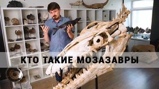 Кто такие мозазавры? Рассказывает палеонтолог Дмитрий Григорьев