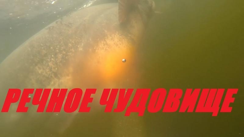 ОПАСНО сом 200кг Подводная ОХОТА НА РЕЧНОГО МОНСТРА Сома Сом больше человека 2020