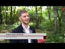 Как в Плавске восстановят Гагаринский парк