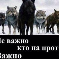 Фотография профиля Салауата Тапалова ВКонтакте