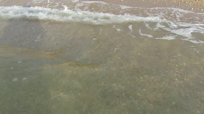 Море октябрь Любимовка 2020